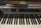 faut-il avoir un don pour faire du piano ?